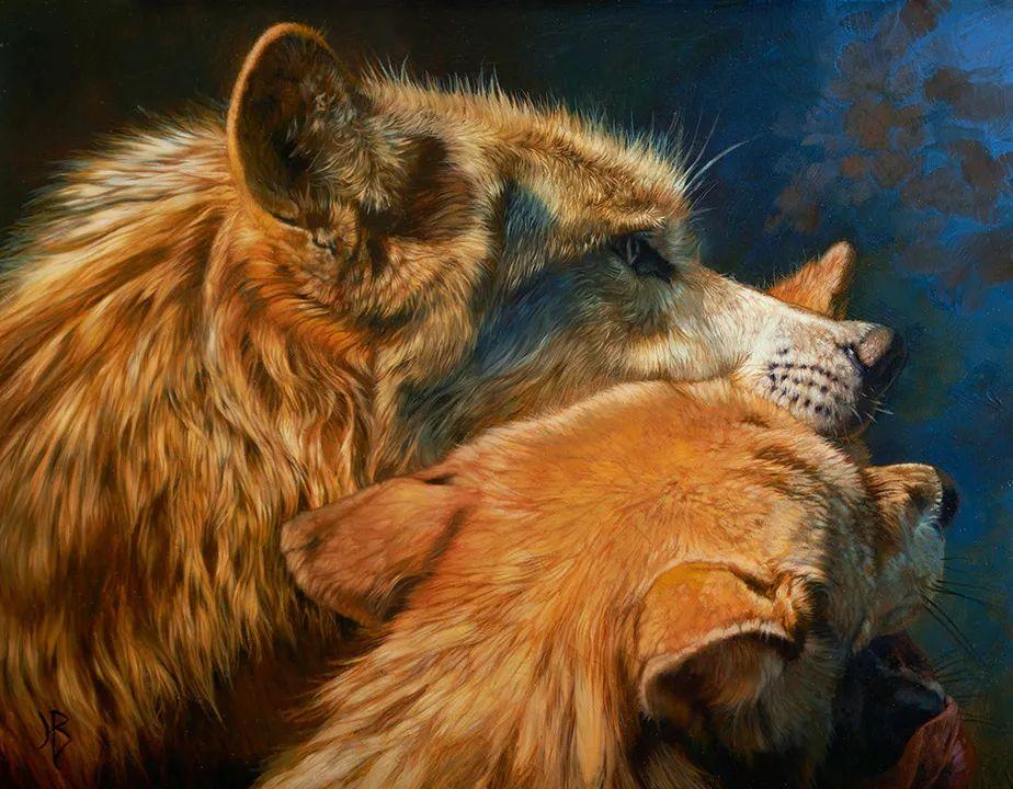 朱莉·贝尔笔下的狼插图31
