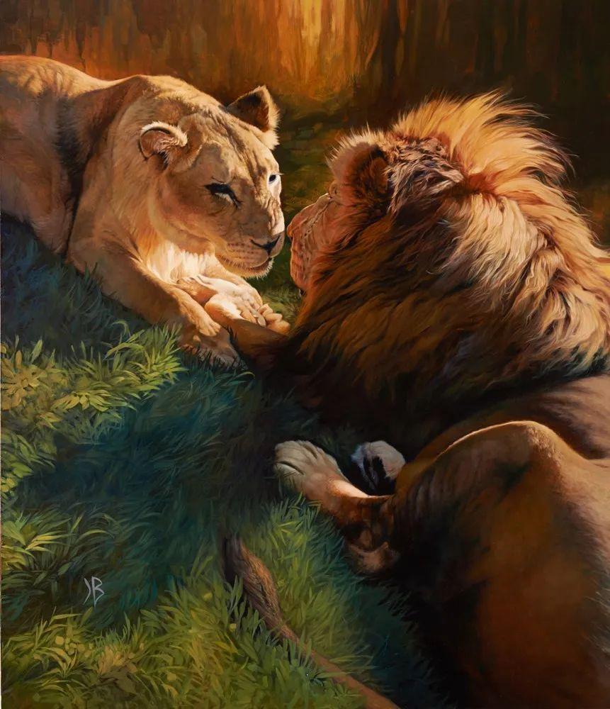 朱莉·贝尔笔下的虎、狮、大象等插图1