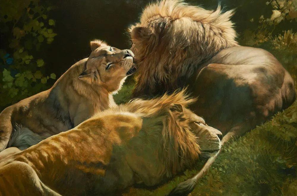 朱莉·贝尔笔下的虎、狮、大象等插图3