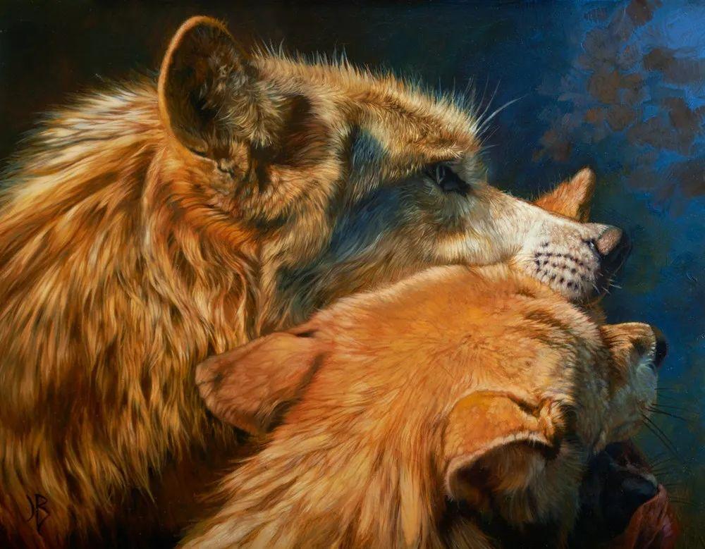 朱莉·贝尔笔下的虎、狮、大象等插图5
