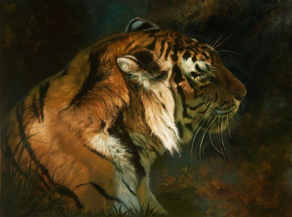 朱莉·贝尔笔下的虎、狮、大象等插图7