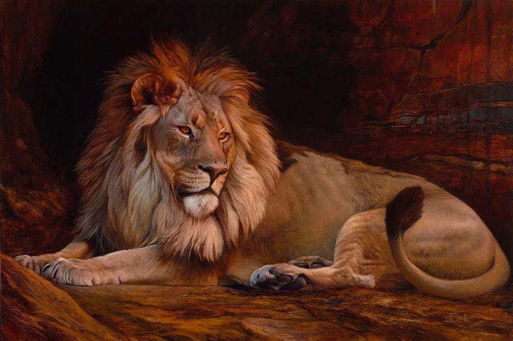 朱莉·贝尔笔下的虎、狮、大象等插图13