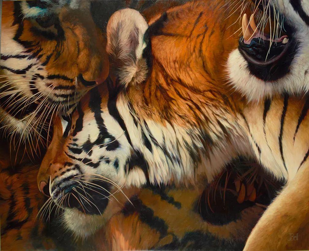 朱莉·贝尔笔下的虎、狮、大象等插图17