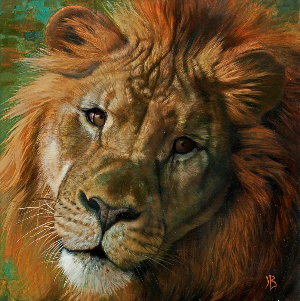 朱莉·贝尔笔下的虎、狮、大象等插图21