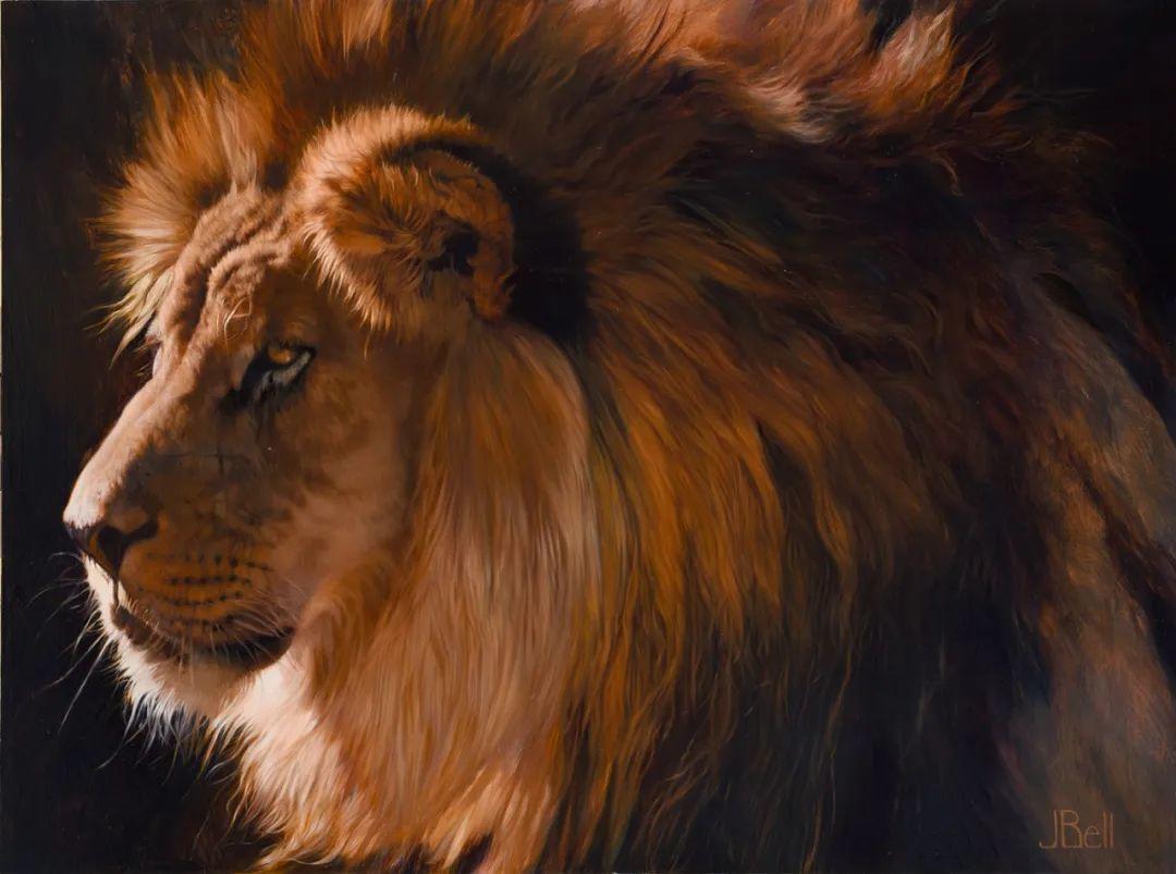 朱莉·贝尔笔下的虎、狮、大象等插图25