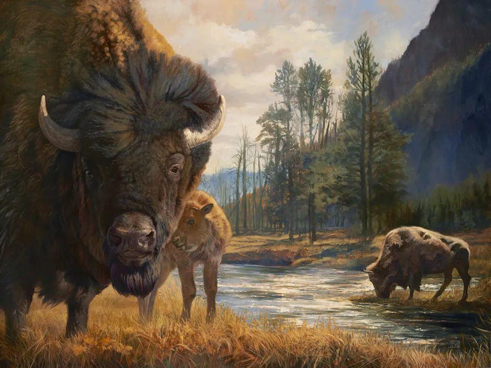 朱莉·贝尔笔下的虎、狮、大象等插图33