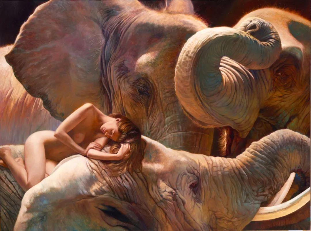 朱莉·贝尔笔下的虎、狮、大象等插图55