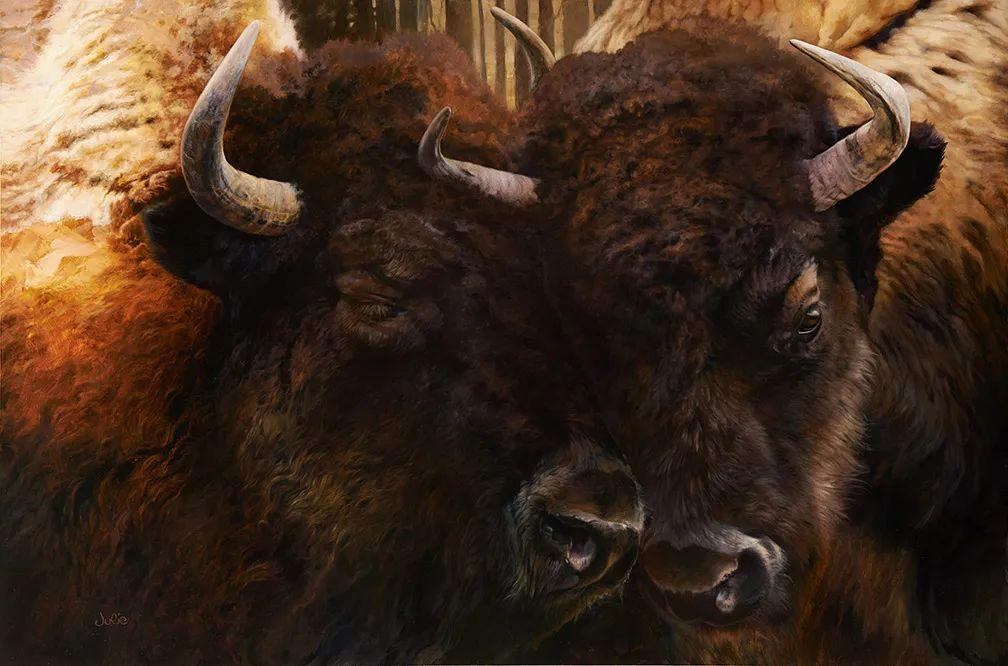 朱莉·贝尔笔下的虎、狮、大象等插图65