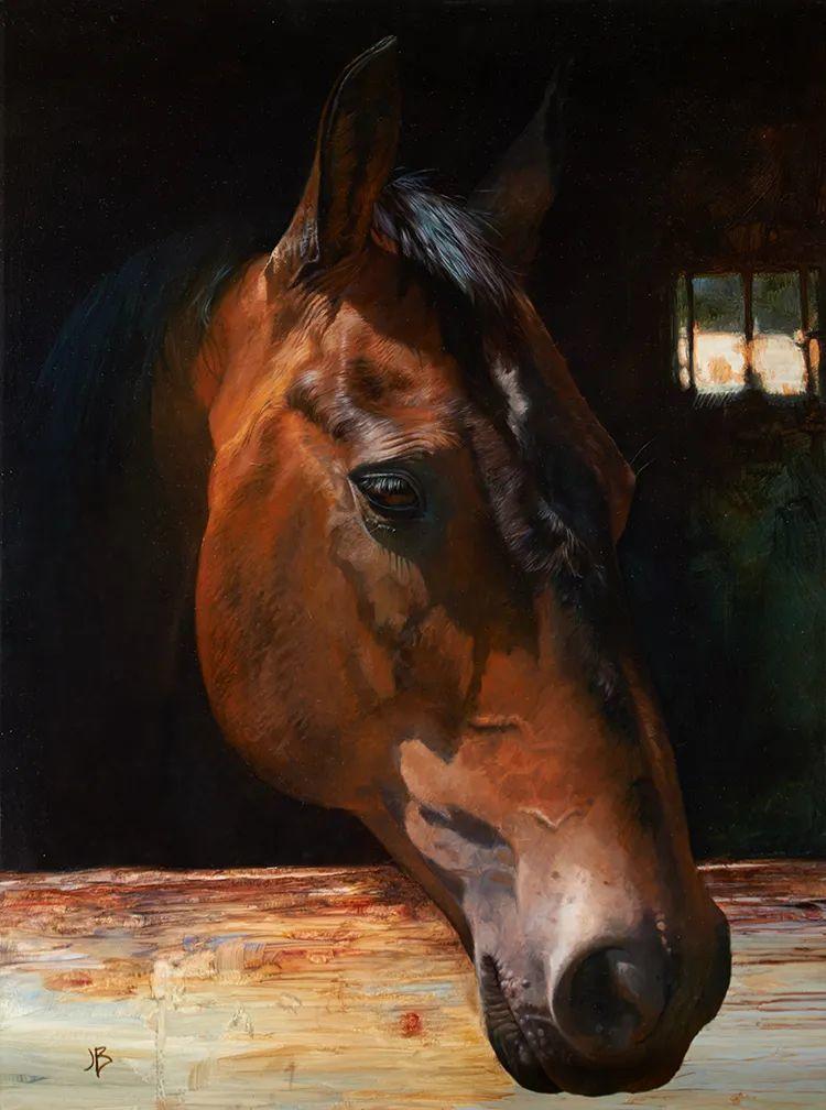 朱莉·贝尔笔下的马插图5
