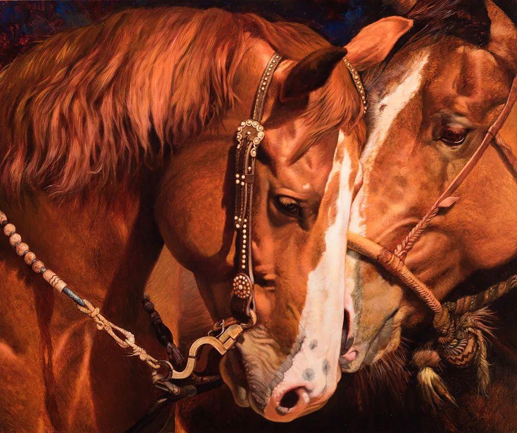 朱莉·贝尔笔下的马插图11