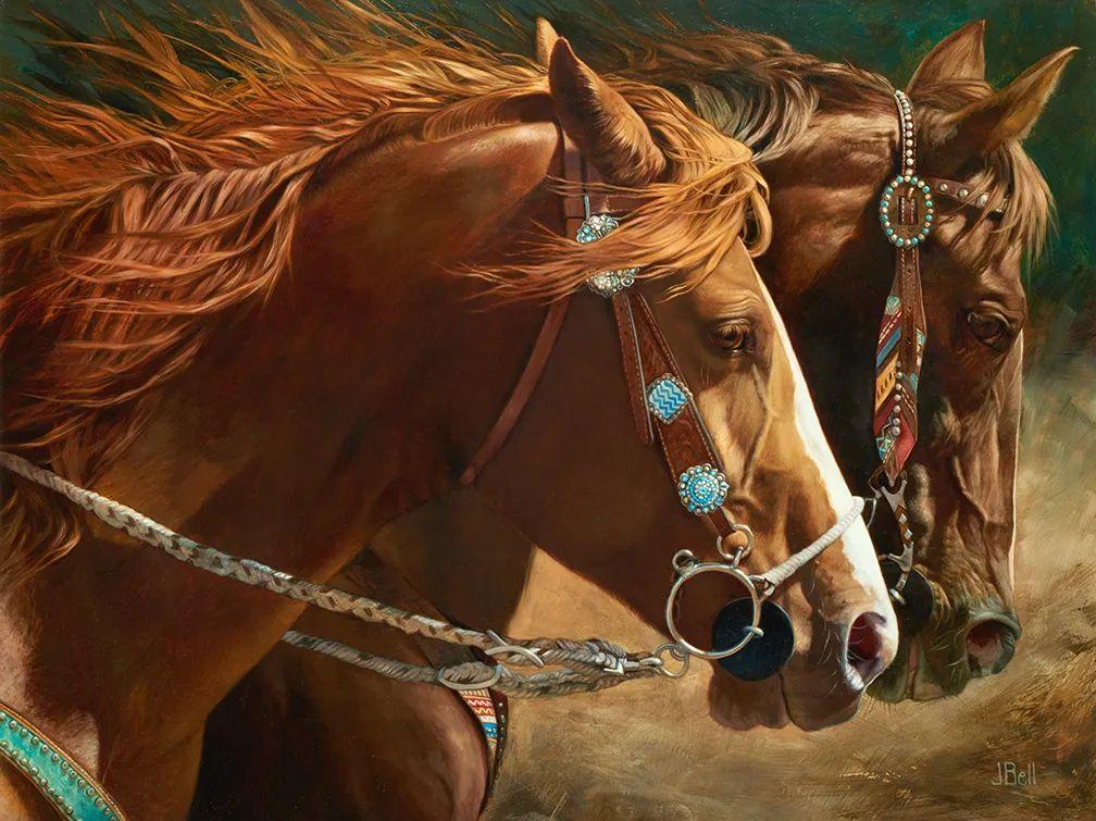朱莉·贝尔笔下的马插图15