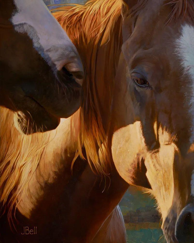 朱莉·贝尔笔下的马插图21