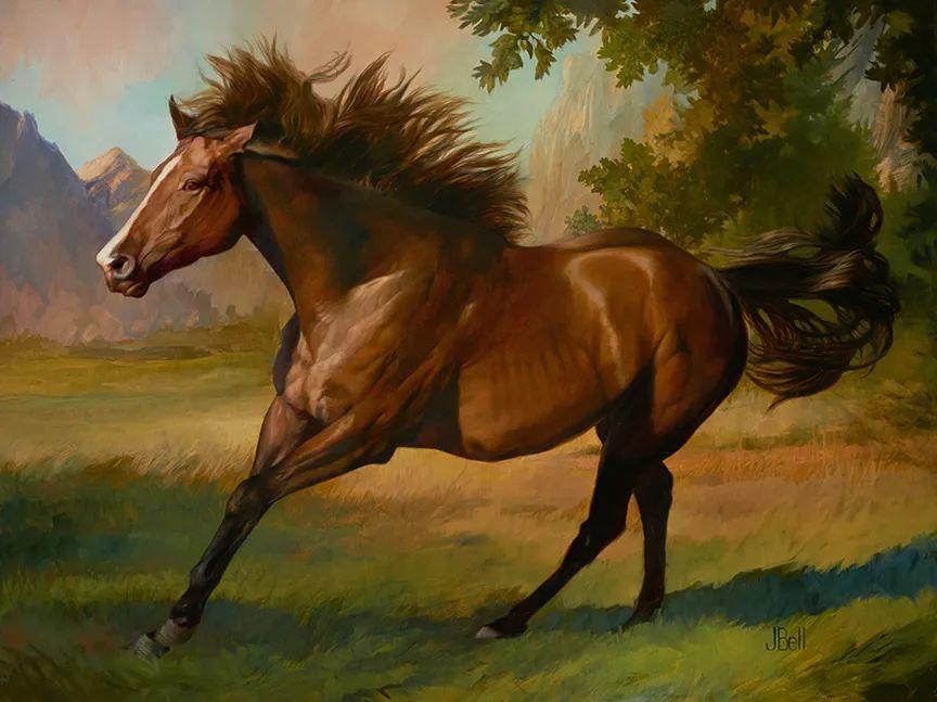 朱莉·贝尔笔下的马插图25