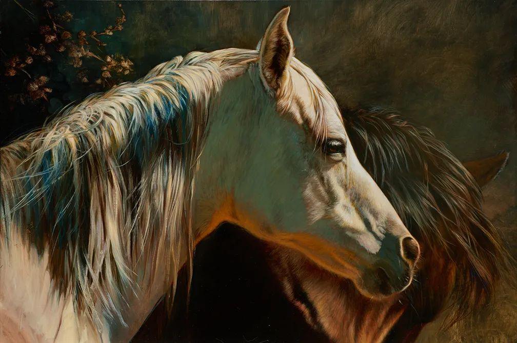 朱莉·贝尔笔下的马插图35