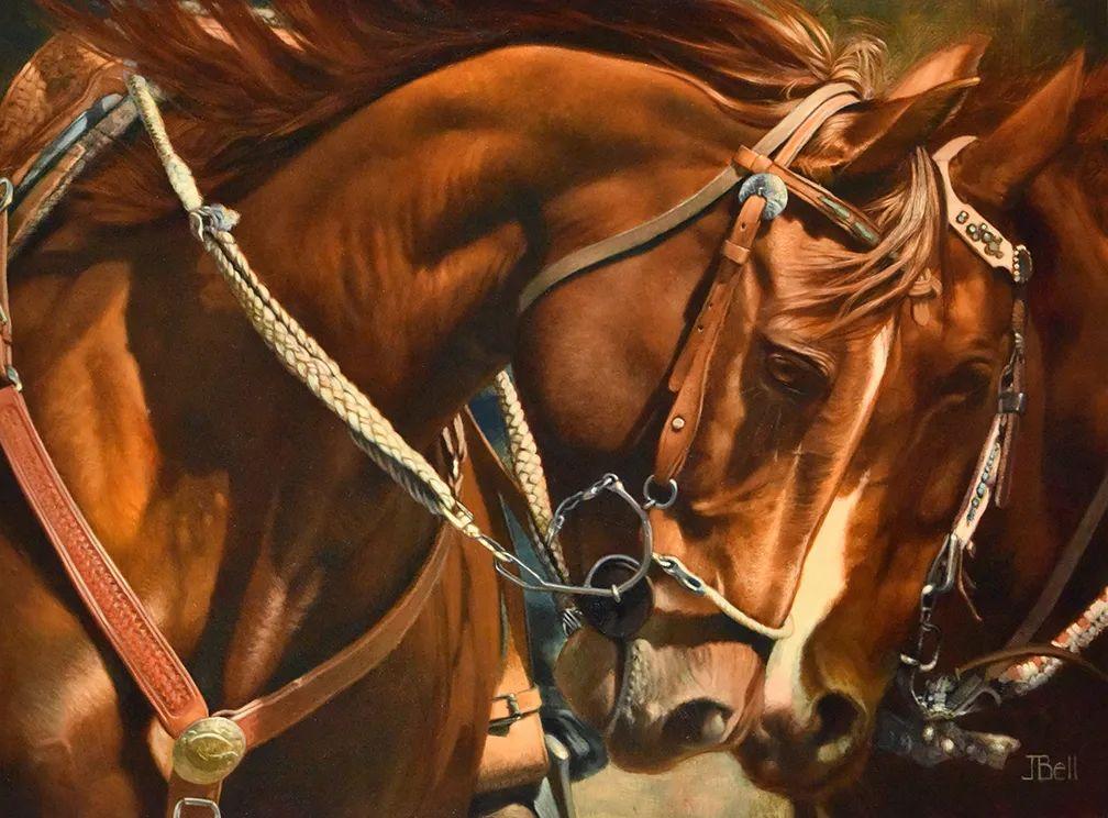 朱莉·贝尔笔下的马插图39