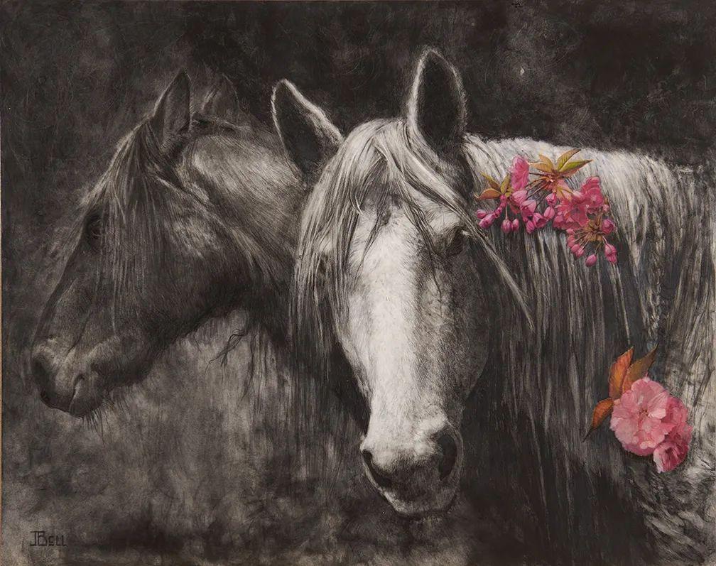 朱莉·贝尔笔下的马插图43