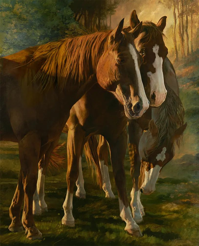 朱莉·贝尔笔下的马插图47