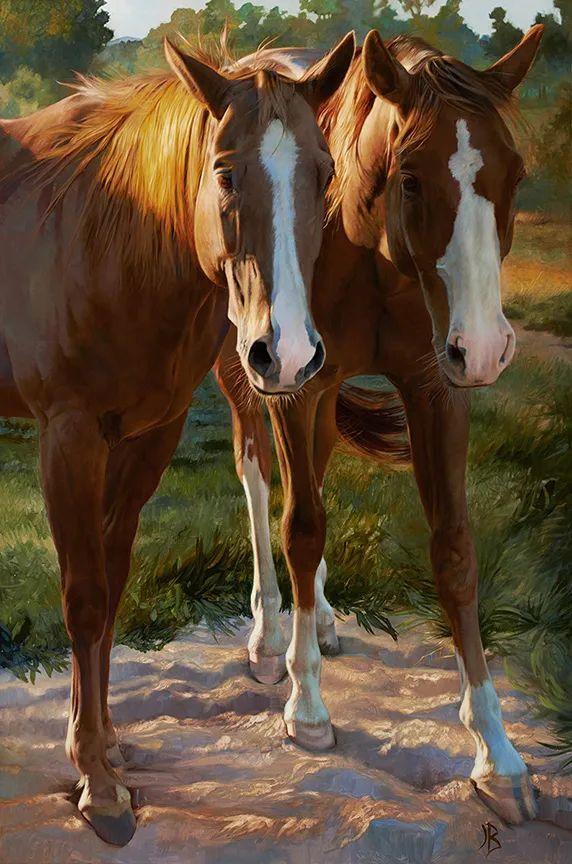 朱莉·贝尔笔下的马插图49