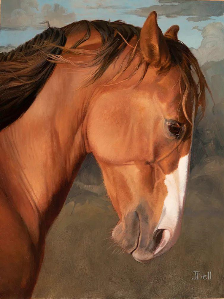 朱莉·贝尔笔下的马插图53