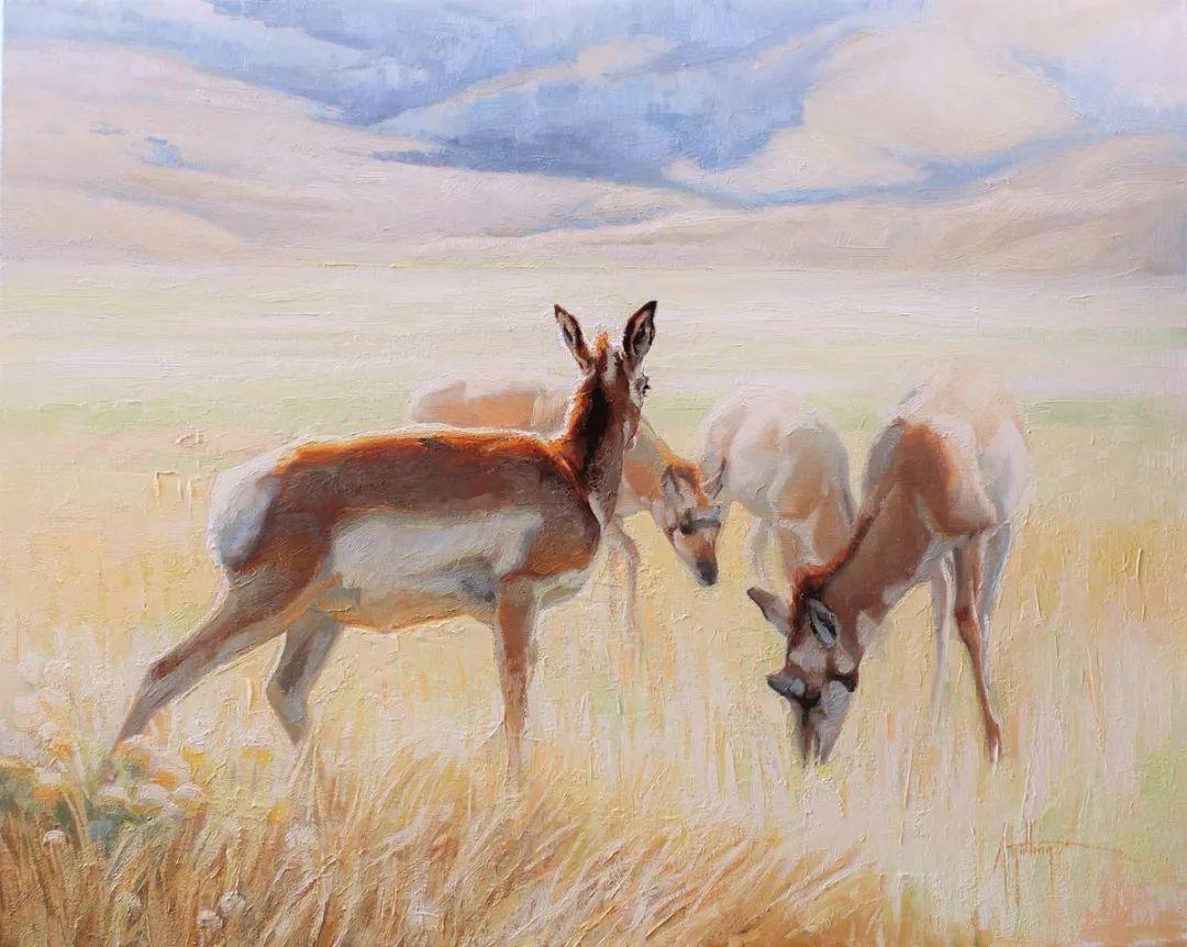 羚羊与耗牛,美国女画家阿比盖尔·古廷作品(下)插图23