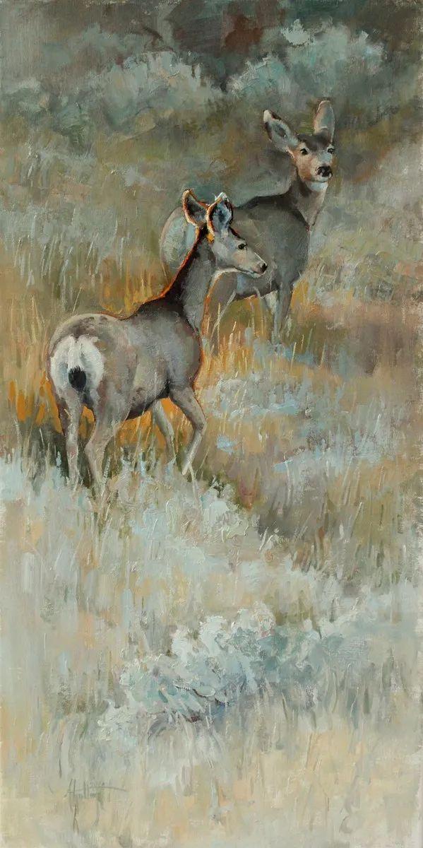 羚羊与耗牛,美国女画家阿比盖尔·古廷作品(下)插图31
