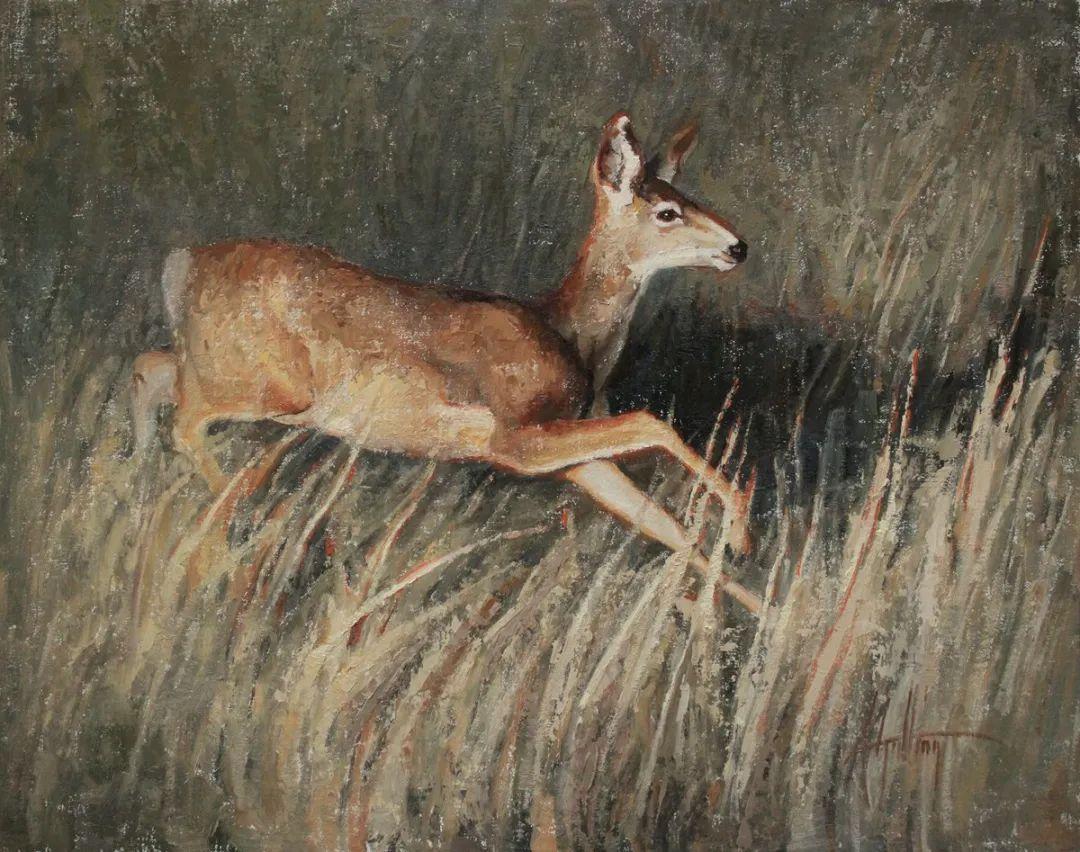 羚羊与耗牛,美国女画家阿比盖尔·古廷作品(下)插图39
