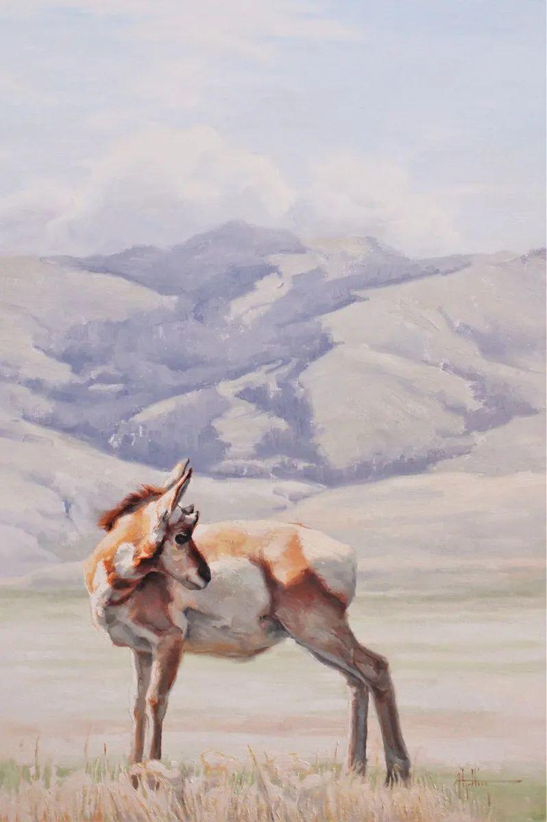 羚羊与耗牛,美国女画家阿比盖尔·古廷作品(下)插图47