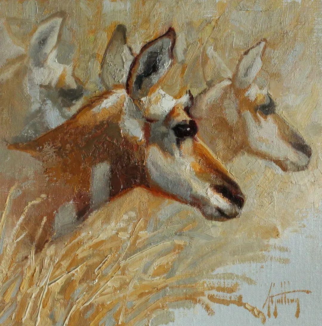 羚羊与耗牛,美国女画家阿比盖尔·古廷作品(下)插图59