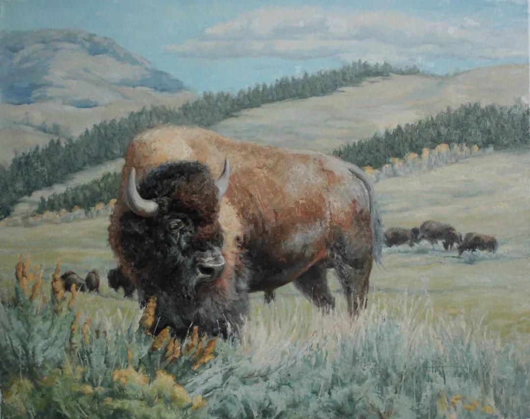 羚羊与耗牛,美国女画家阿比盖尔·古廷作品(下)插图83