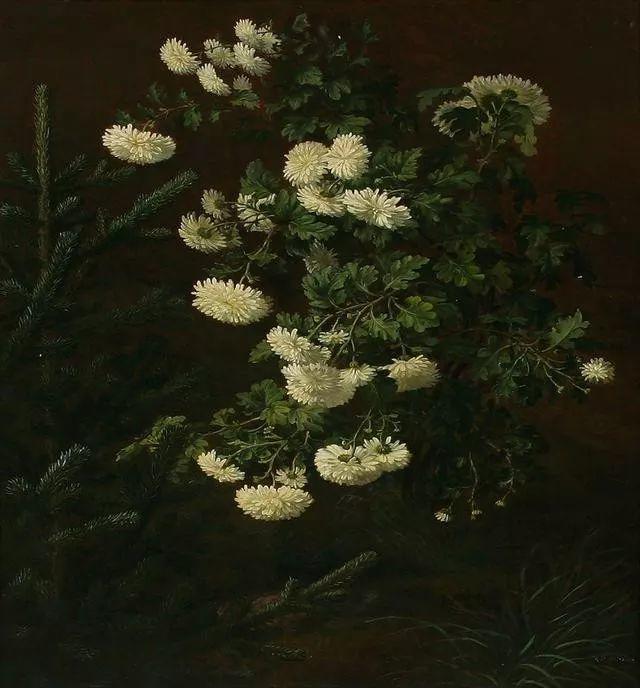 一两百年前的静物花卉作品插图7
