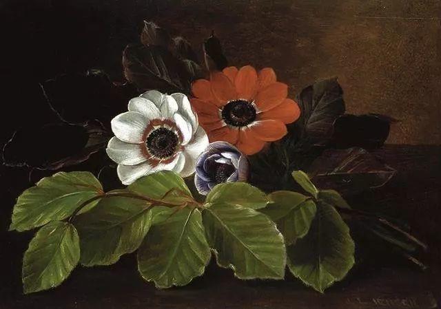 一两百年前的静物花卉作品插图67
