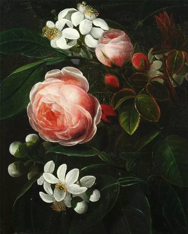 一两百年前的静物花卉作品插图87