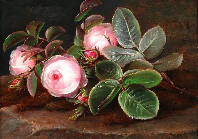 一两百年前的静物花卉作品插图97