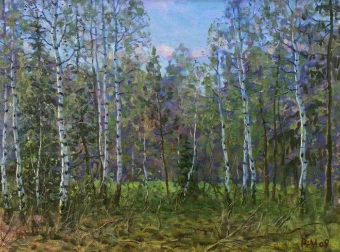 俄罗斯风景的隐藏之美,雷姆·塞弗鲁姆卢科夫作品选插图17