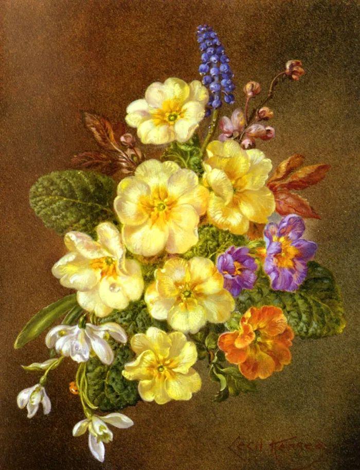 英国最伟大的花卉画家之一,艺术家塞西尔·肯尼迪插图25