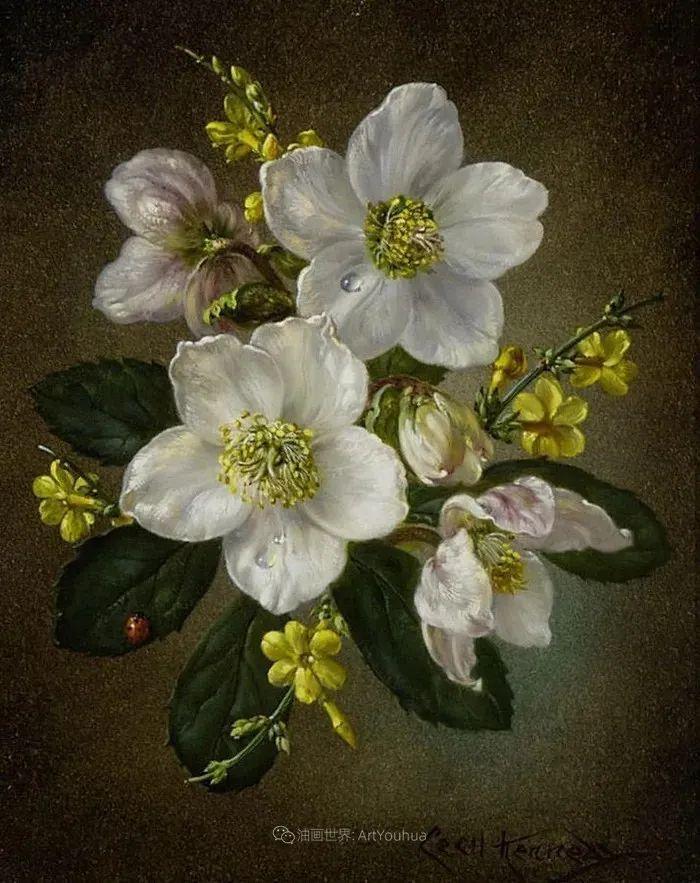 英国最伟大的花卉画家之一,艺术家塞西尔·肯尼迪插图37