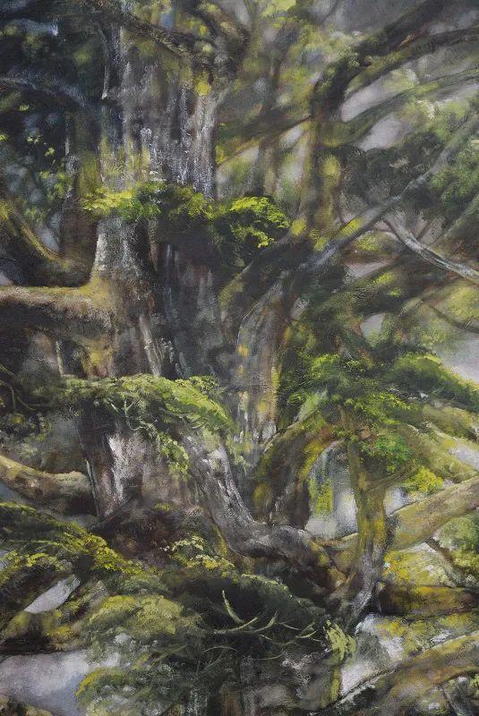 与花为邻,与草木为伍,她的画室充满大自然的灵气插图79