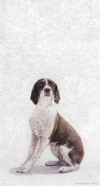 用颜料触摸这个世界!美国画家Iris Scott画选(中)——动植物篇插图117