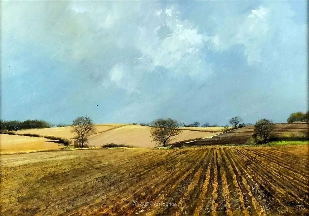 写实田园风光,英国艺术家Clive Madgwick作品二插图51