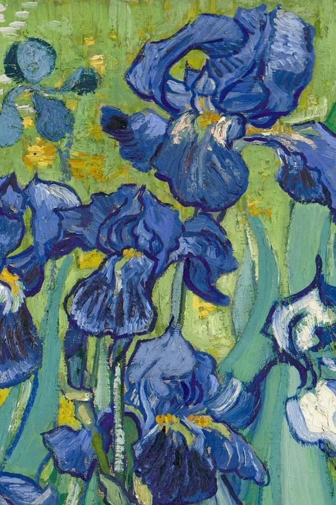 且等春归来,大师笔下的花插图12