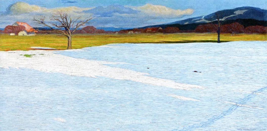 素雅的风格,瑞士艺术家汉斯·埃默尼格插图15