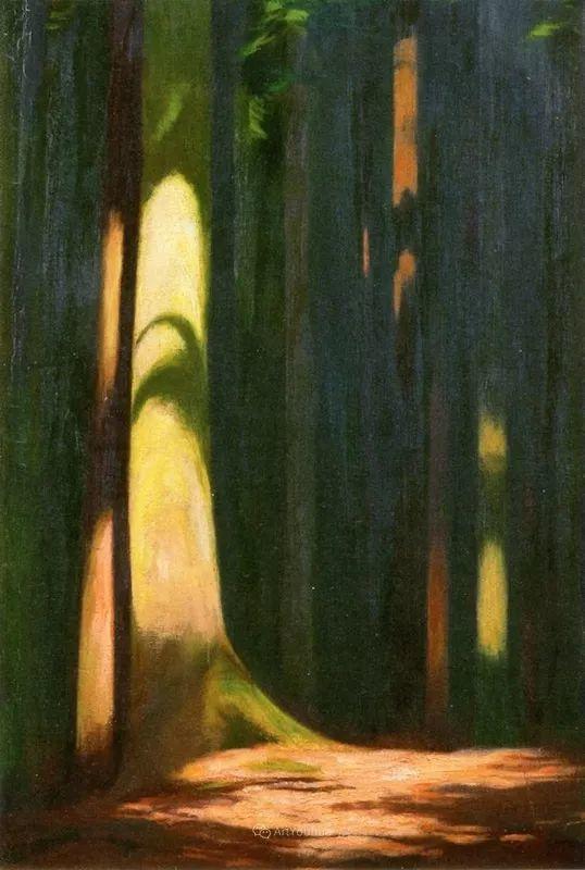 素雅的风格,瑞士艺术家汉斯·埃默尼格插图37