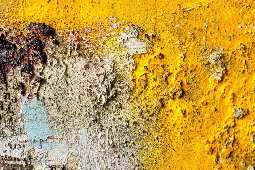 美妙的风景,丰富的肌理!荷兰艺术家埃米莉安娜·科达罗插图20
