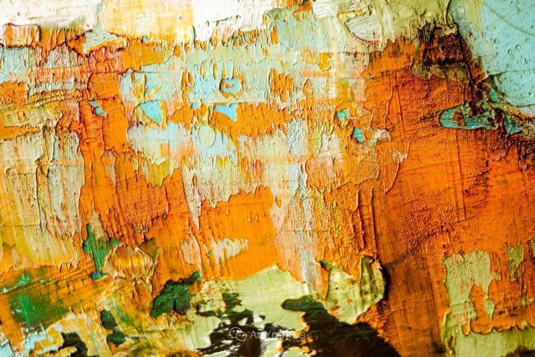 美妙的风景,丰富的肌理!荷兰艺术家埃米莉安娜·科达罗插图39
