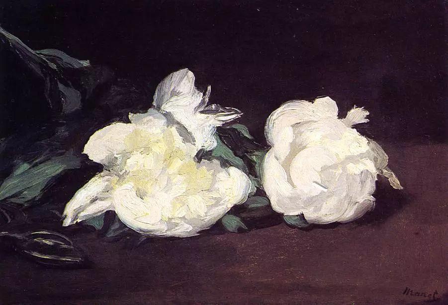 完美的色调,经典花卉作品75幅插图41