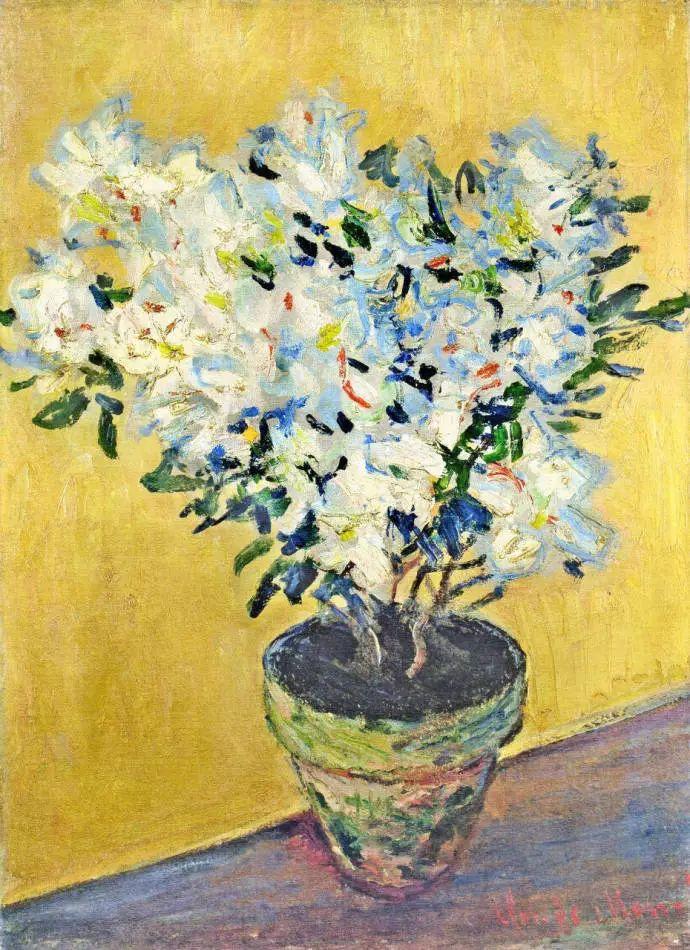 完美的色调,经典花卉作品75幅插图45