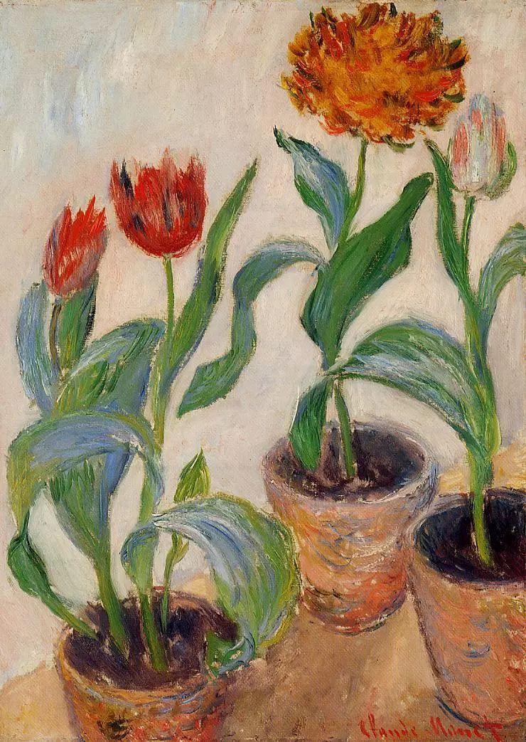 完美的色调,经典花卉作品75幅插图57