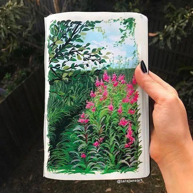 速写本里的美腻风景,看完仿佛置身于自然美丽的大森林插图7