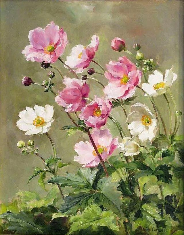 静物花卉,英国画家安妮·科特里尔插图11