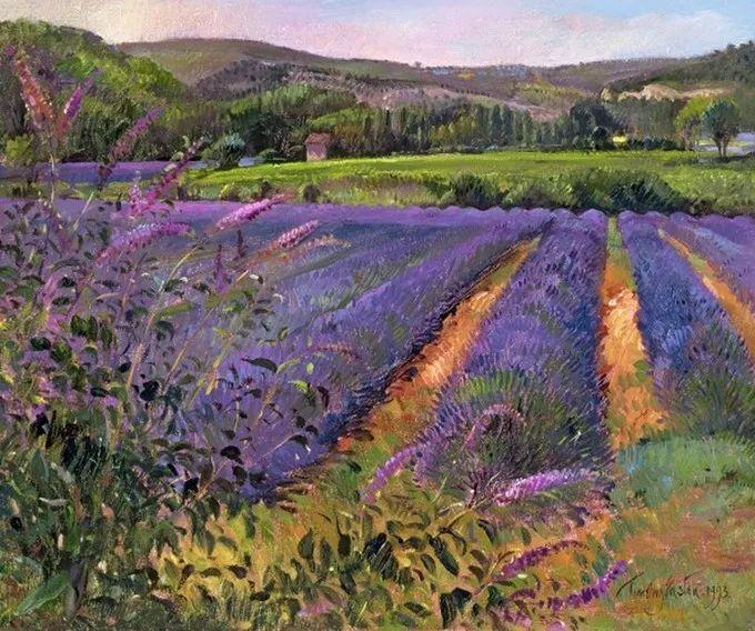 太美了!缤纷斑斓的英伦风情花园,画家蒂莫西·伊斯顿的风景画美到迷了眼!插图7